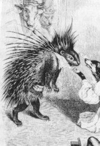 Fig.24 Grandville istrice
